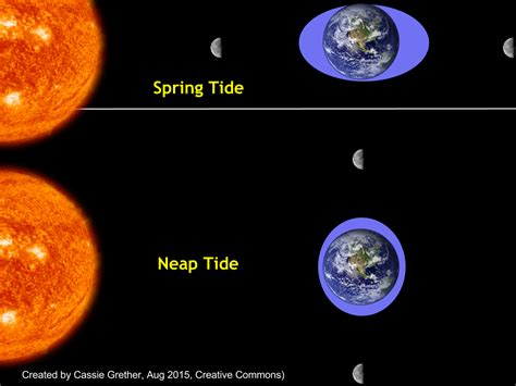 tide diagram grether science chapter 5 our moon