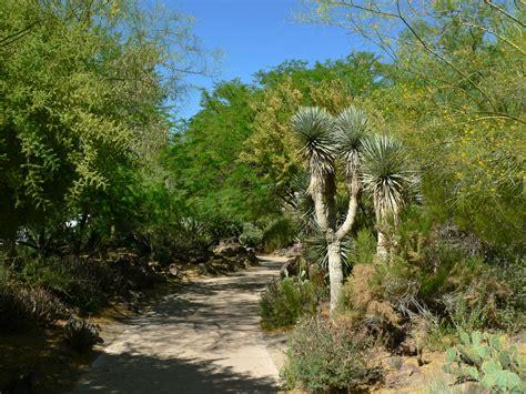 Ethel M Botanical Cactus Garden File Ethel M Botanical Cactus Garden 3 Jpg