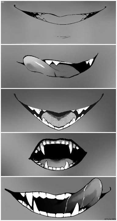 175 best images about Teeth! on Pinterest | Wolves, Sharks