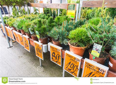 home and garden store in stock image