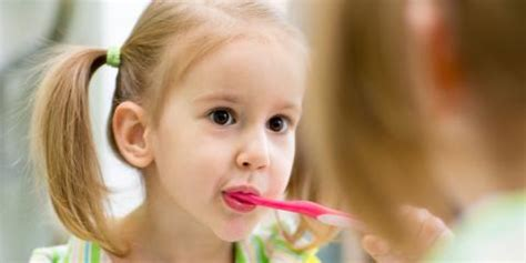 Local Children?s Dentist Explains When to Bring in Your Child for the First Time   Prather