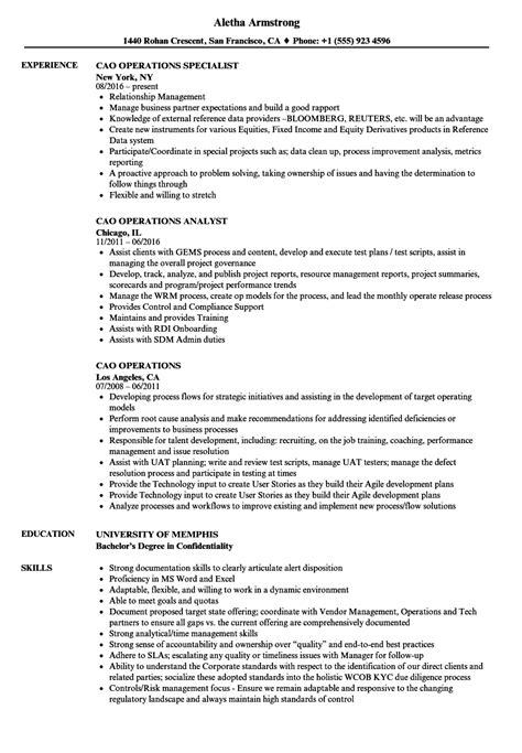 Aml Officer Sle Resume by Bsa Officer Sle Resume Legislative Esl Specialist Sle Resume