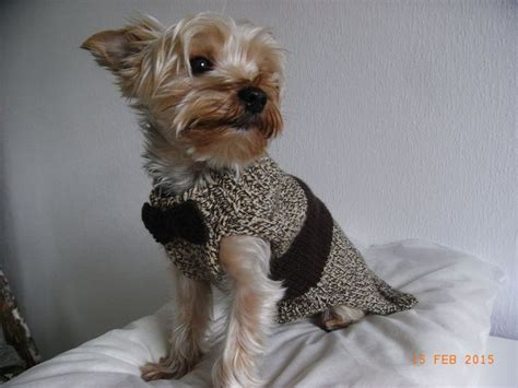 yorkie clothes patterns small sweater knit yorkie clothes yorkie coat small clothes pet
