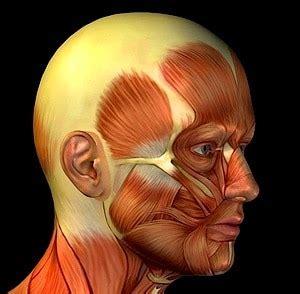 mal di testa e sonno fisioterapia rubiera dolore sintomi terapia e rimedi