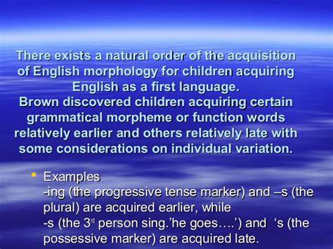 Lvl Rona Pantskirt Abu second language acquisition theories