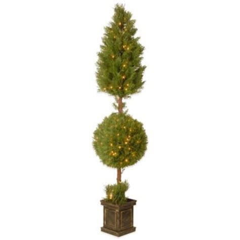 where to buy topiary trees buy topiary trees from bed bath beyond