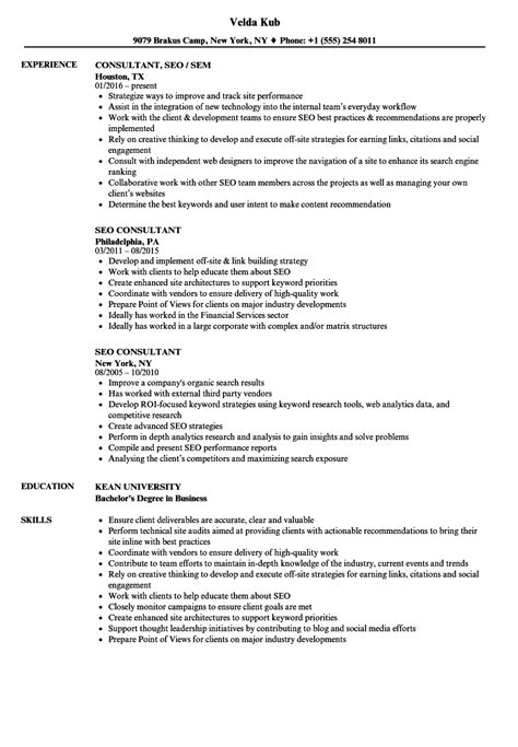 Seo Consultant Sle Resume by Seo Consultant Resume Resume Ideas