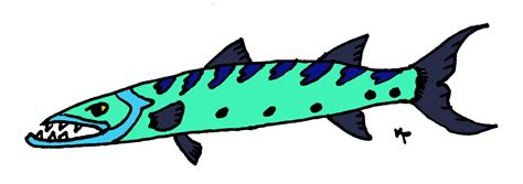 barracuda clipart barracuda clip pictures to pin on pinsdaddy