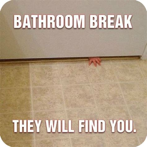 Meme Bathroom - top five scariest things about becoming a parent