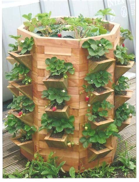 tour a fraisiers en bois et pyramide de fraise