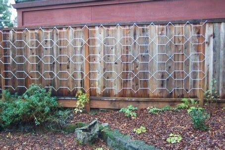 Modular Trellis salvia modular trellis from ikea garden