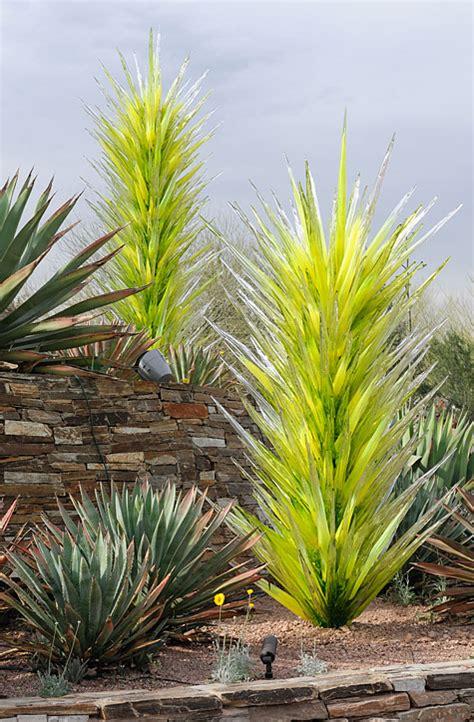 chihuly desert botanical garden chihuly desert botanical garden