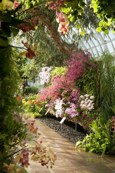 ny botanical garden orchid show 196 best greenhouses gazebos images on
