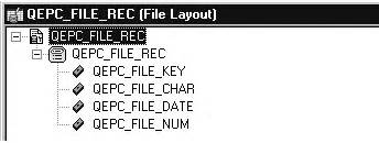 record layout definition file layout exles
