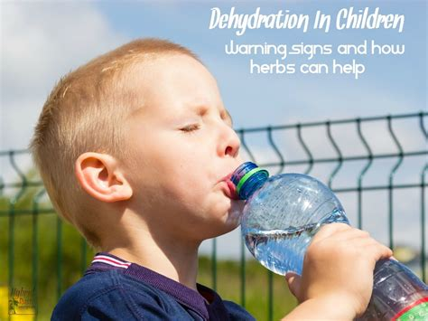 dehydration in children dehydration in children warning signs and how herbs can