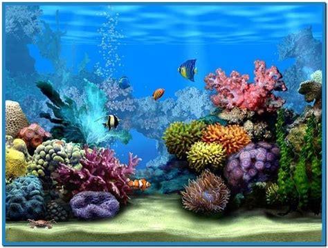 live screensavers for windows live marine aquarium screensaver download free