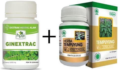 Ginextrac Untuk Batu Ginjal Dan Empedu Cara Alami Mengobati Batu Ginjal Terapi Herbal Penyakit