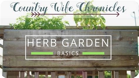 herb garden basics country chronicles savoring the stillness of a simple country