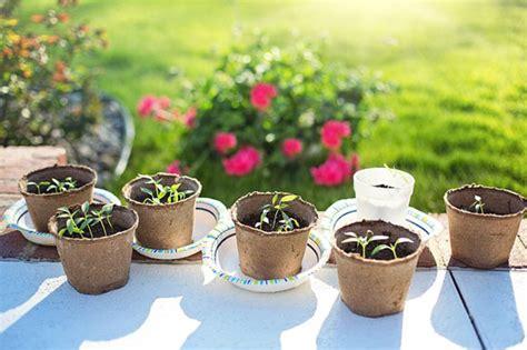 concime per giardino concime npk uso per orto e giardino guida per casa