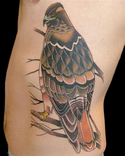 hawk tattoo pinterest red tail hawk tattoo idea hawk tattoo ideas pinterest