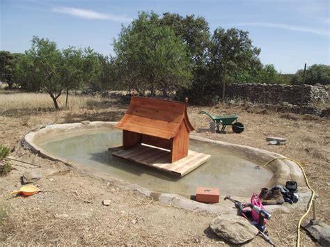 Backyard Duck Pond Ideas Ducks Summer House And Pond Front Jpgdescription Duck Pond 1 Ducks Pinterest Summer