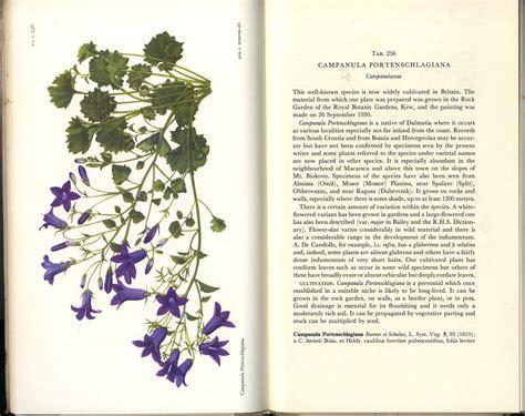 Table Magazine Natural History Plates Curtis Botanical Magazine 1955