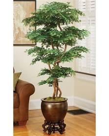 Artificial Tree For Home Decor Designer Quality 5 Pagoda Ming Aralia Silk Tree At Petals