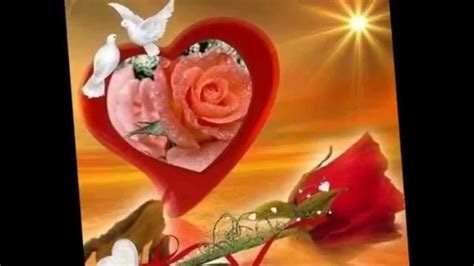 imagenes de dios rosas fotos de rosas con dios pictures to pin on pinterest
