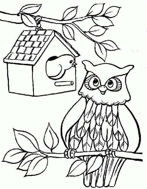 owl coloring pages coloringpagesabc com