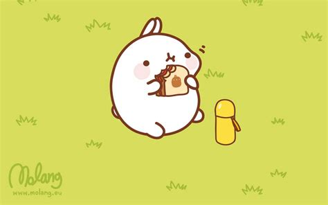 monday bunday molang bunny eats design