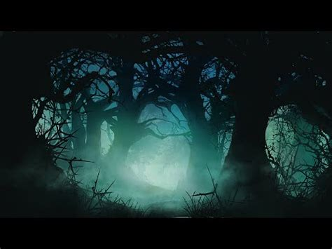 celtic instrumental  darkwood forest youtube