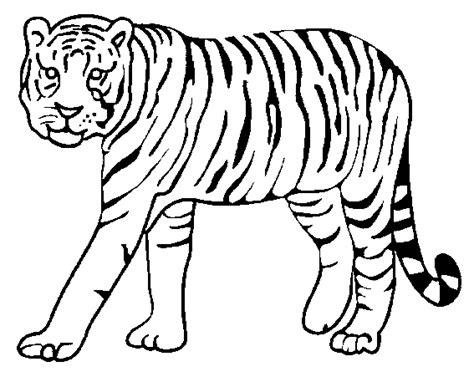 tiger eye coloring page coloriage dans la savane tigres 224 colorier allofamille
