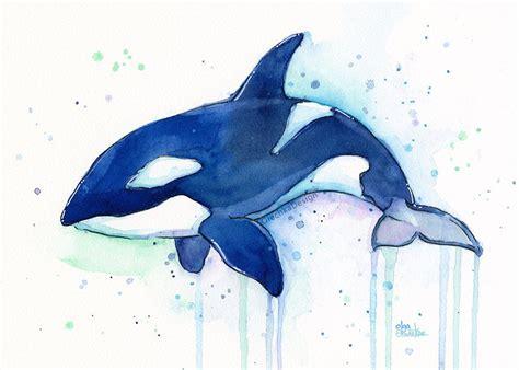 bilder kinderzimmer wal killer whale orca watercolor print whale whale