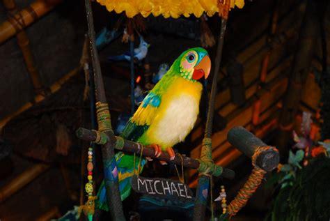 tiki room birds walt disney s enchanted tiki room marcio disney entertainment network