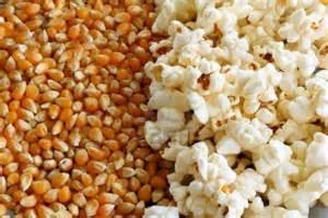 popped popcorn kernels wallpaper