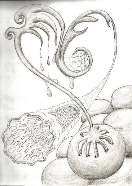 imagenes con lapiz dibujos a l 225 piz de amor