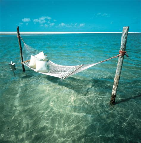 Hammock The Water cool hammock ideas images