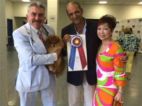 starfire pomeranians tidewater kennel club of virginia monday june 30 2014 canine chronicle
