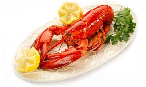 Benih Lobster Air Tawar Selangor lobster air tawar malaysia bela dan makan sendiri