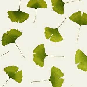 Leaves From Marimekko by 1000 Images About Ginkgo