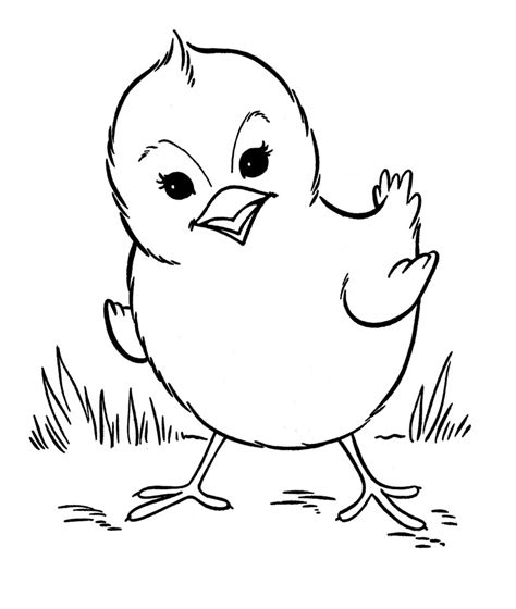 coloring book pages baby animals free printable farm animal coloring pages for