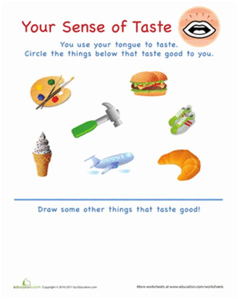 does food coloring go bad your sense of taste worksheets preschool learning and