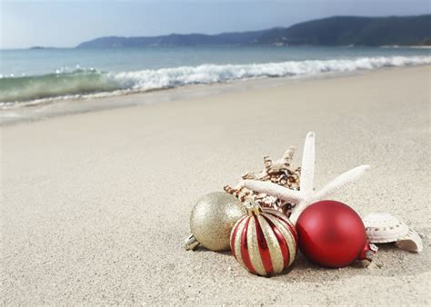 images of christmas on the beach order by december 17 for christmas delivery maui by design