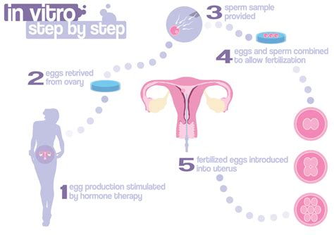 test in vitro ivf financing top 21 best ways to pay for ivf