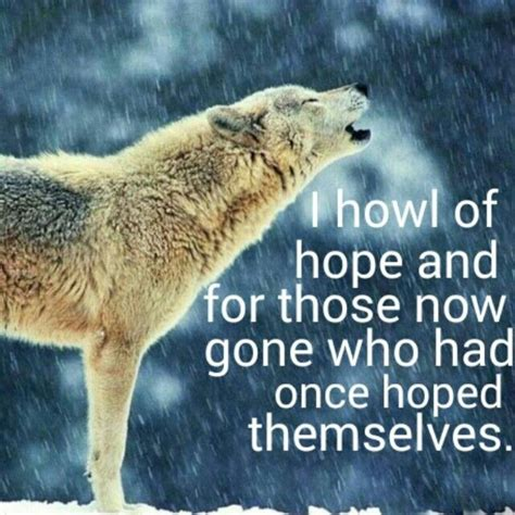 Wolf Howl Mountain Wolves quotes about wolves howling quotesgram