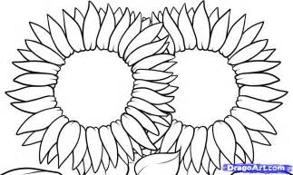 To draw a sunflower colouring pages