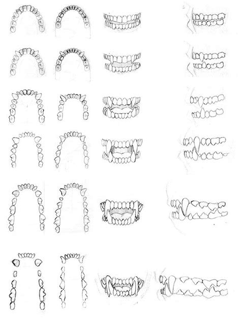 werewolf fangs tutorial teeth studies 2002 by dirktiede http dirktiede