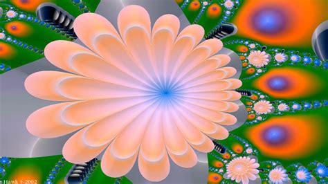 Wallpaper Flowers 3 top 51 3d flower wallpaper