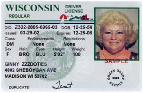 wisconsin drivers license template best photos of wisconsin drivers license template