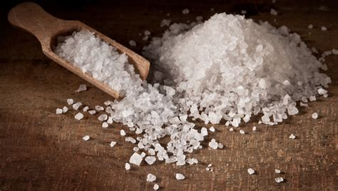 is salt bad for dogs 10 foods that are bad for dogs dogtime